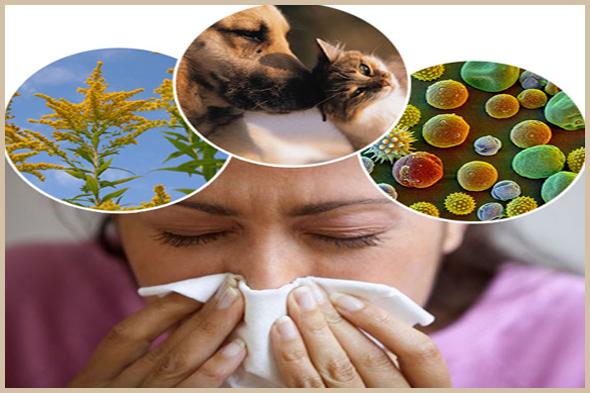 Congestion nasale liée aux allergies